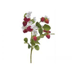 Crenguta capsuni+floricele