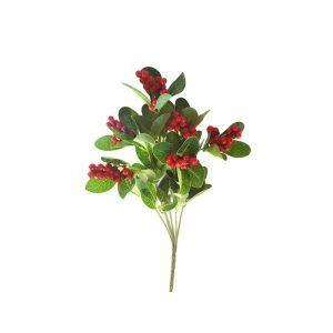 Crenguta vedeata+bobite rosii